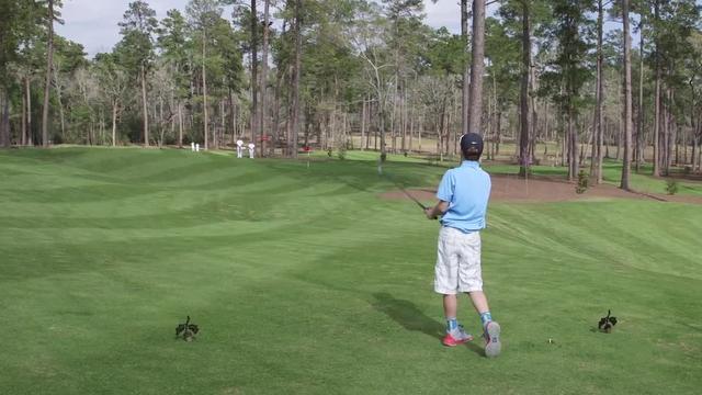 Uitbreiding golfbaan De Haar voorlopig van de baan