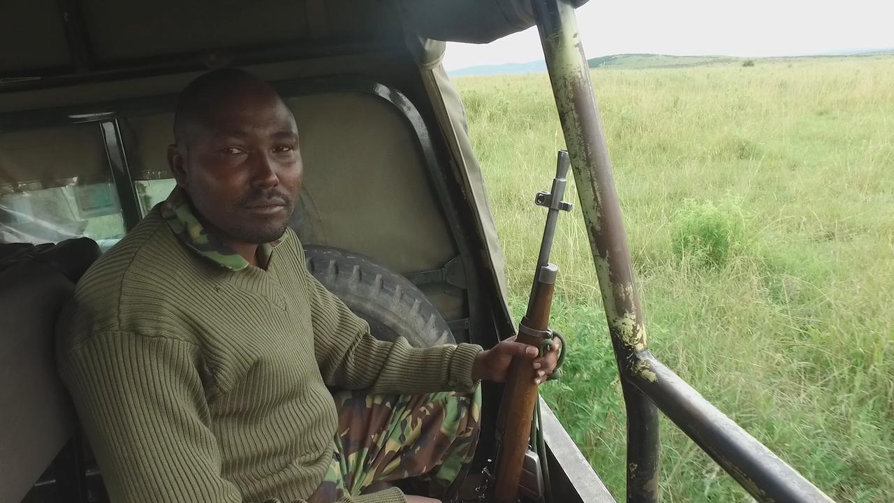 NU.nl bij natuurbescherming Kenia in aanloop naar ivoorverbranding