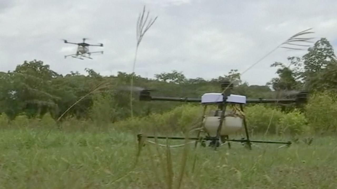 Drones met landbouwgif vernietigen cocaplanten in Colombia