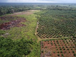 Land komt tegemoet aan roep van milieugroepen