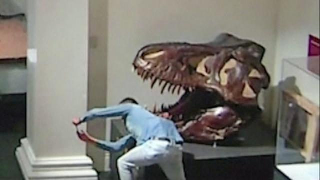 Inbreker maakt selfies met dino's in Australisch museum