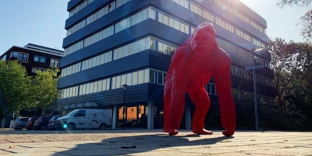 De Stadstuin opent nieuwe locatie met werkruimtes in Overvecht
