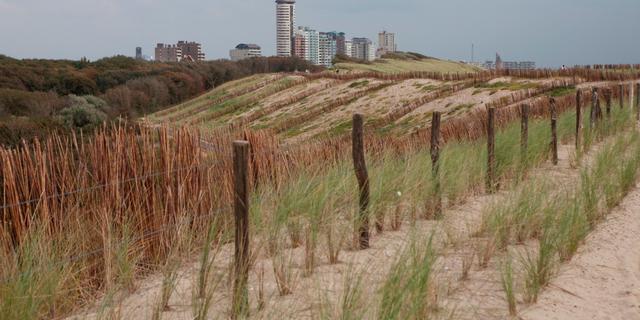 Kan Nederland een extreme zeespiegelstijging technisch opvangen?