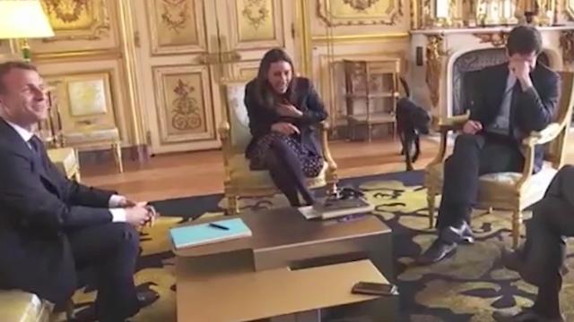 Hond president Macron doet plasje tijdens vergadering in Elysee-paleis