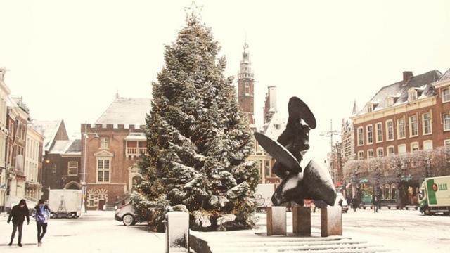 Tienduizend lampjes kerstboom Grote Markt te adopteren voor goed doel