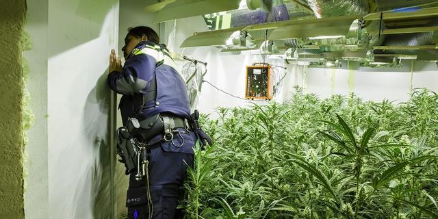Politie rolt hennepkwekerij in portiekwoning in Selwerd op