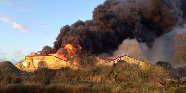 Duizenden biggen komen om na grote brand in varkensstal Oirschot