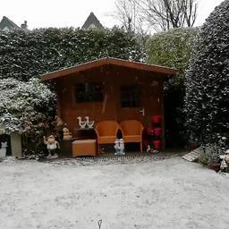 Video | Dun laagje sneeuw kleurt Nederland wit