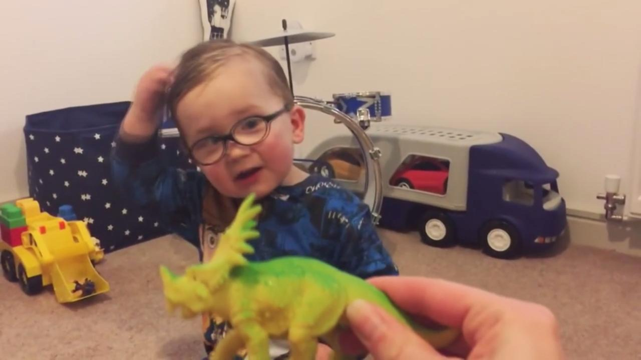 Jongetje weet alles van dinosauriërs
