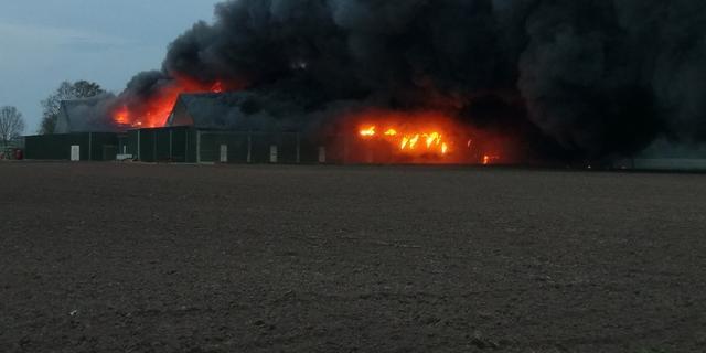 Grote brand bij champignonkwekerij in Bavel
