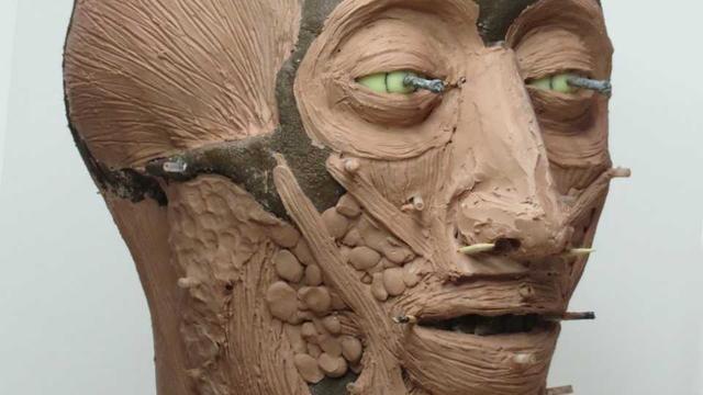 Onthulling reconstructie gezicht van gesneuvelde Rus bij veldslag Castricum