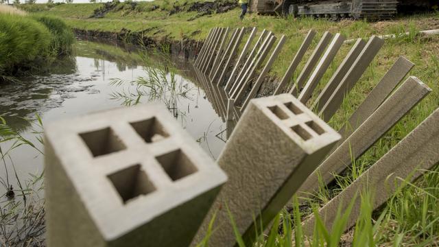 Palen van gras verstevigen Middelburgse oever