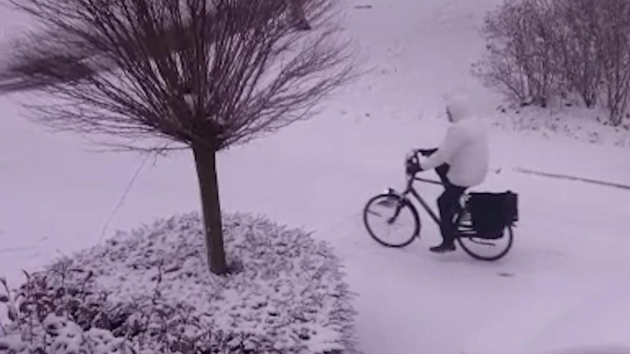 Witte sneeuwlaag bedekt delen van Nederland