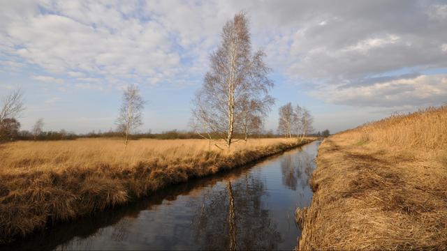 KNMI: Lucht boven Nederland stuk schoner door coronamaatregelen