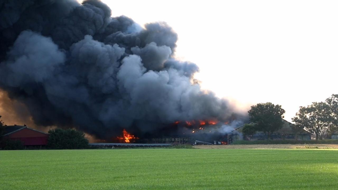 Grote rookwolken door brandende kippenschuren in Friesland