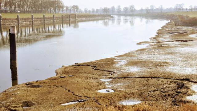 Mobiele dijk in Maas moet waterpeil Paesplas veilig hoger krijgen