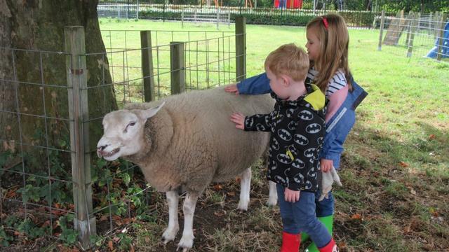'Kinderboerderij Parkhoeve in Breda naar de rechter'