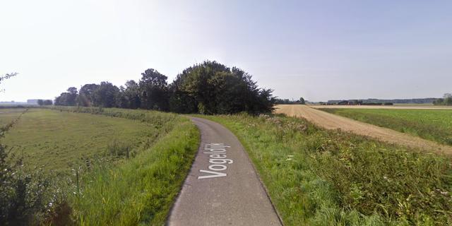 Provincie kapt 37 bomen langs Vogeldijk