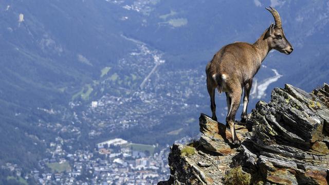 Mont Blanc is afgelopen twee jaar centimeter gekrompen