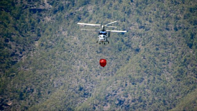 Toeristen op Gran Canaria geëvacueerd vanwege nieuwe bosbranden