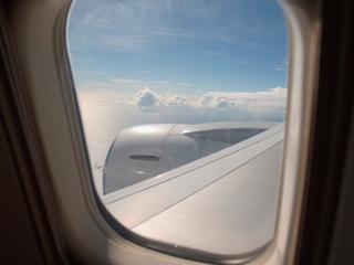 Stewardess zou niet hebben geweten dat er een hond in de tas zat