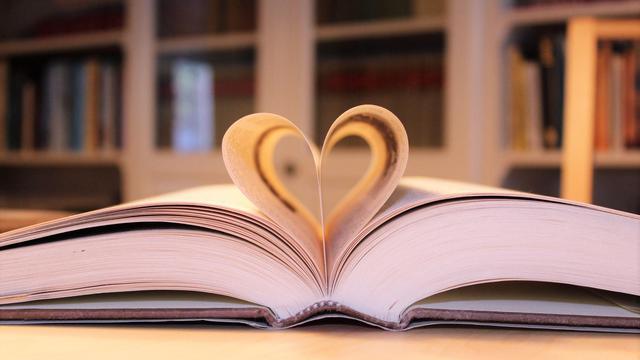 Uitgevers bepalen ook komende vier jaar de prijs van een boek