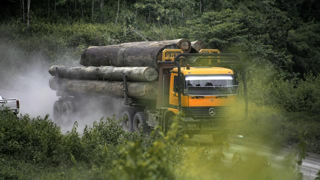 Overheid wil hardhout erkennen uit Maleisië met keurmerk