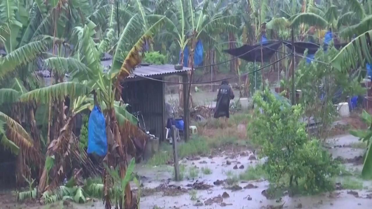 Tyfoon Bailu brengt schade aan bomen en auto's in China