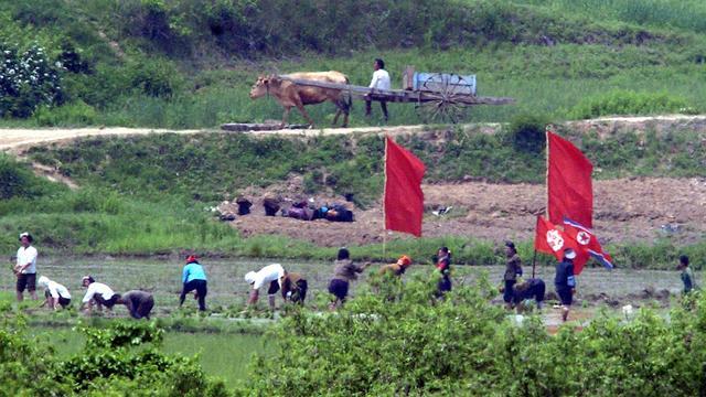 VN-chef ziet 'duidelijke bewijzen van humanitaire nood' in Noord-Korea