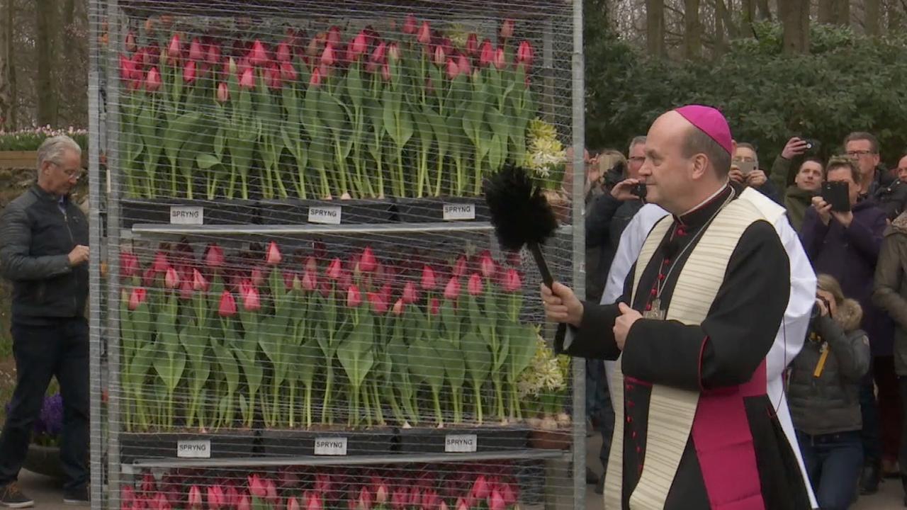Rotterdamse bisschop zegent bloemen voor de Paus