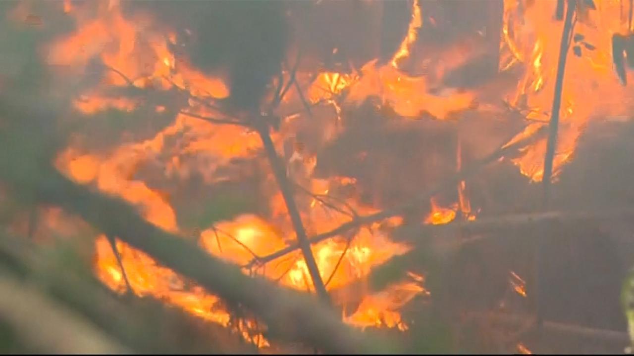 Nieuw-Zeelandse brandweer steekt preventief branden aan