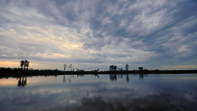 Waterschappen: Regen van volgende week gaat droogte niet oplossen