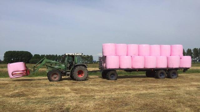 Pink Ribbon actie in weiland Elza Hoeve