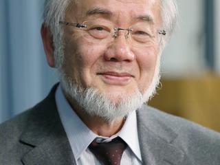 Yoshinori Ohsumi deed onderzoek naar 'autofagie', een celproces