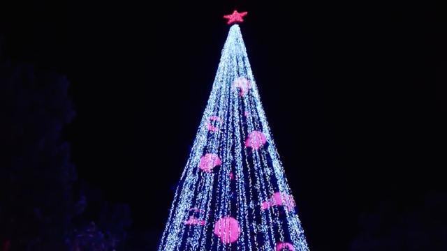 Kerstmiddag van ASG in Wilhelminadorp