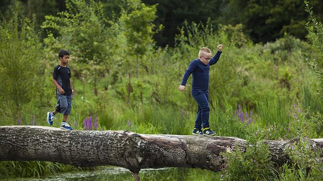 Gratis uit: In bomen en touwen klimmen op ruige natuurspeelplaats