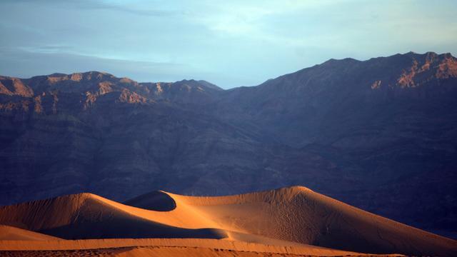 Miljoenen bloemen door 'superbloei' in Death Valley