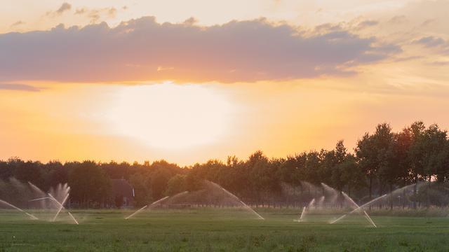 Sproeiverbod van kracht in West-Brabant