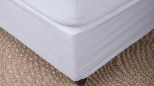 Bedbodems onbelangrijk voor lichaamsondersteuning