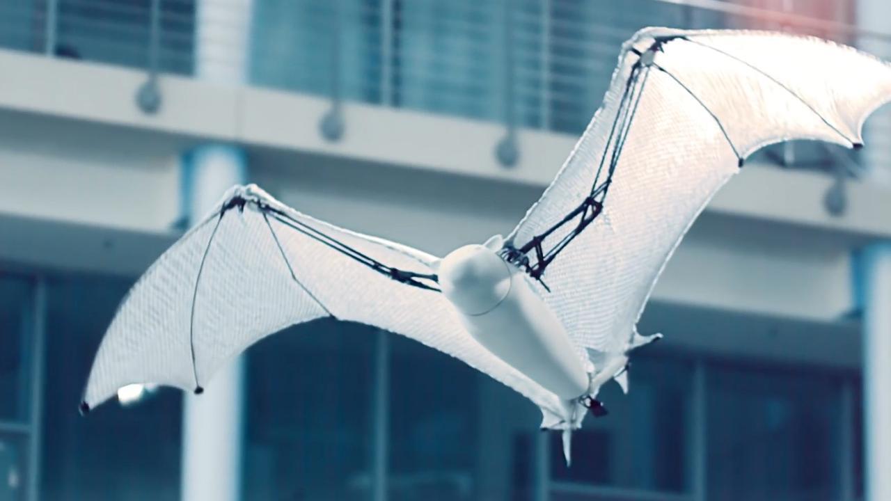 Semi-autonome 'vleermuisrobot' vliegt levensecht