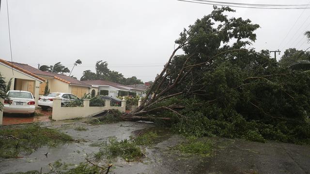 Dit wordt het nieuws: Nasleep Irma in Florida, Koning naar Sint Maarten