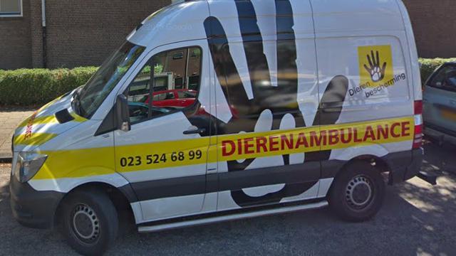 Inbrekers stelen 1.500 euro van dierenambulance in Haarlem