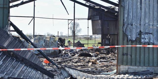 28 schapen dood door ontploffing xtc-lab Poortvliet