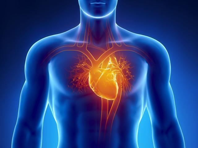 Biometrisch inlogsysteem herkent mensen aan vorm van hun hart