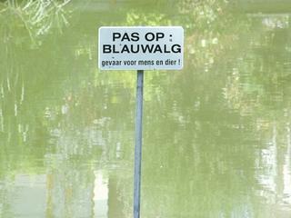 Provincie Noord-Brabant geeft tijdelijk negatief zwemadvies af