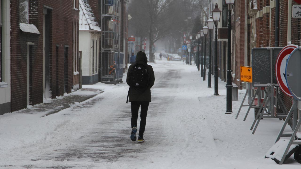 Voor het eerst sinds 2012 zeer strenge vorst, pinguïns naar binnen gehaald - NU.nl