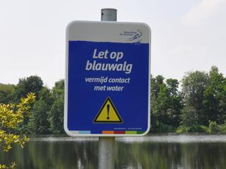 Er is blauwalg actief