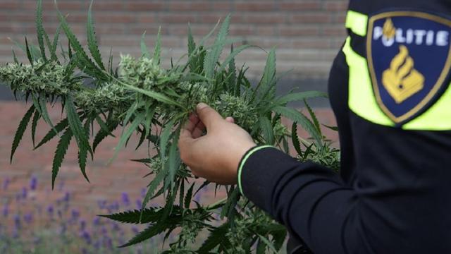 Politie vindt hennepopslag in gebouw in De Meern, twee mannen opgepakt