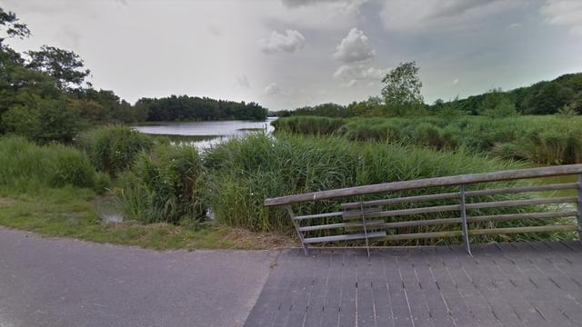 Honderden dode vissen in zuiden van Amsterdamse Bos door parasiet