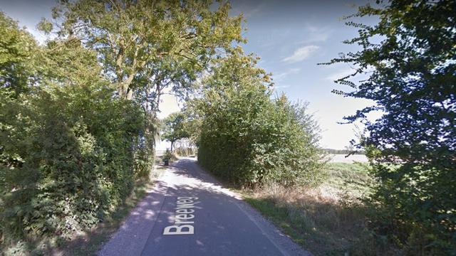 Waterschap kapt komende maanden 2.700 bomen op 35 locaties in Zeeland